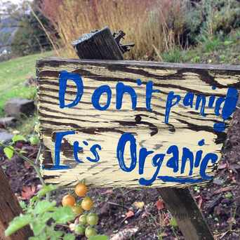 Photo of Student Led Unity Garden (SLUG) in University Park, Portland