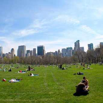 Photo of Sheep Meadow in Upper West Side, New York