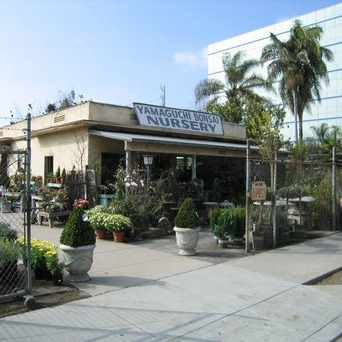 Photo of Yamaguchi Bonsai Nursery in Sawtelle, Los Angeles