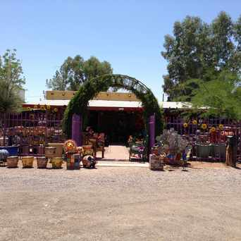 Photo of The Garden Center Of Tucson in Blenman-Elm, Tucson