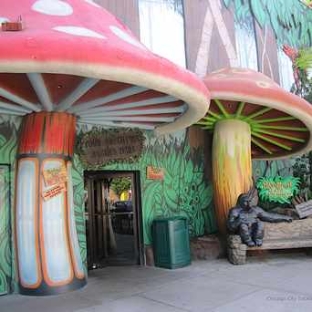 Photo of Rainforest Cafe in River North, Chicago