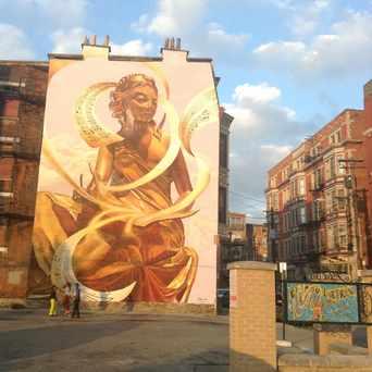 Photo of The Golden Muse in Cincinnati