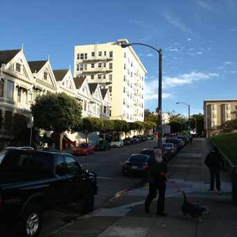 Photo of Painted Ladies in Alamo Square, San Francisco