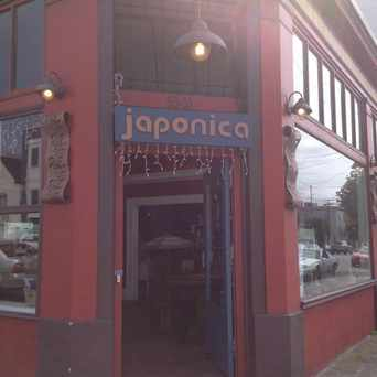 Photo of Japonica in Central Richmond, San Francisco