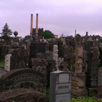 Photo of Mount Zion Cemetery in Maspeth, New York