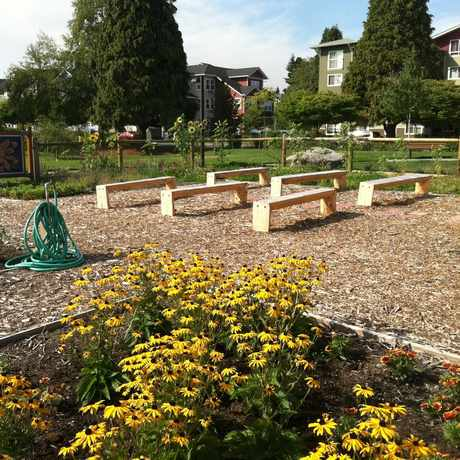 Photo of West Seattle Bee Garden in High Point, Seattle