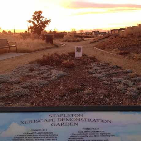 Photo of Stapleton Xeriscape Demonstration Garden in Stapleton, Denver