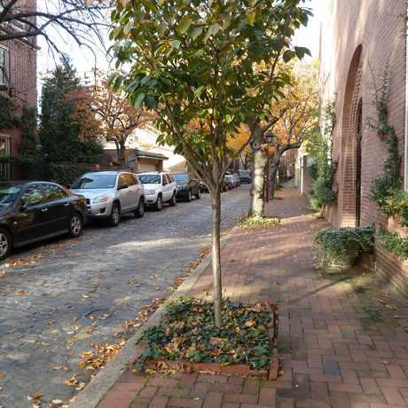 Cypress Court Apartments Philadelphia