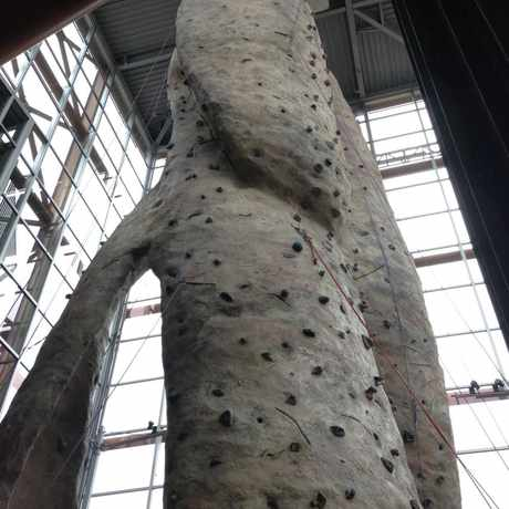 Photo of REI in Cascade, Seattle