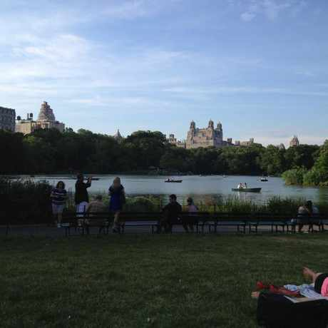 Photo of Central Park, New York in Central Park, New York