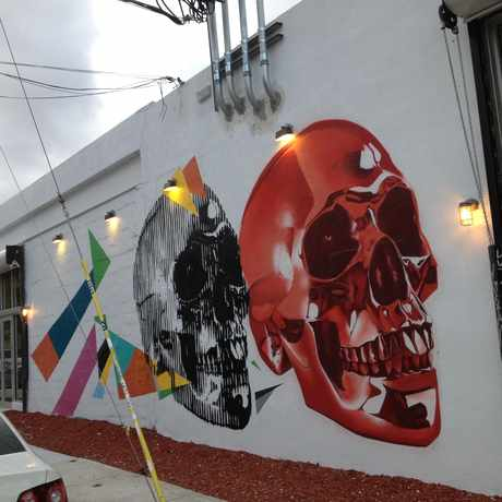 Photo of Wynwood Arts District in Wynwood / Edgewater, Miami
