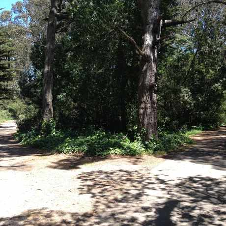 Photo of Golden Gate Park Bicycle Trails in Golden Gate Park, San Francisco