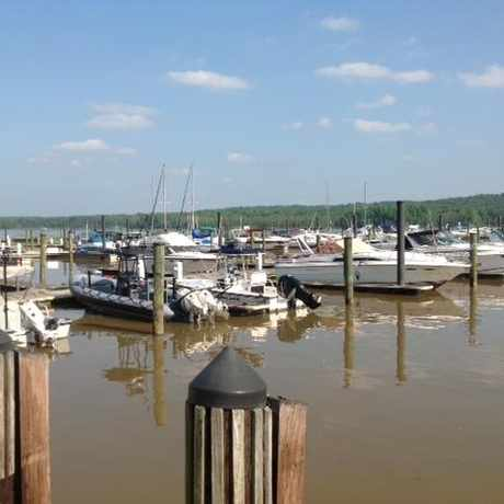 Photo of Fort Washington Marina in Fort Washington