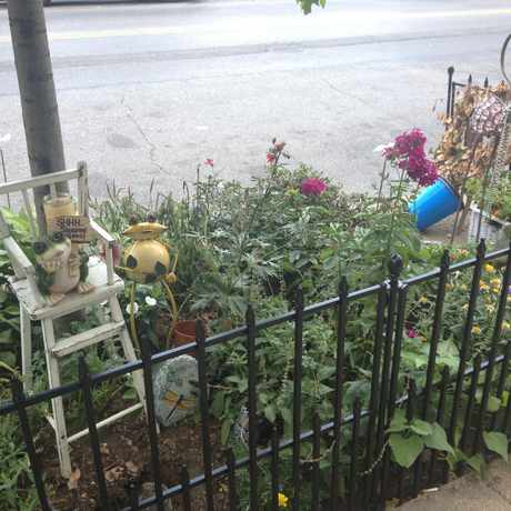 Photo of Mini Garden 37th Ave Btwn 78-79th Street in Jackson Heights, New York