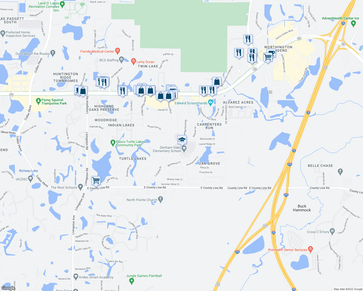 map of restaurants, bars, coffee shops, grocery stores, and more near 1422 Oak Grove Blvd in Lutz