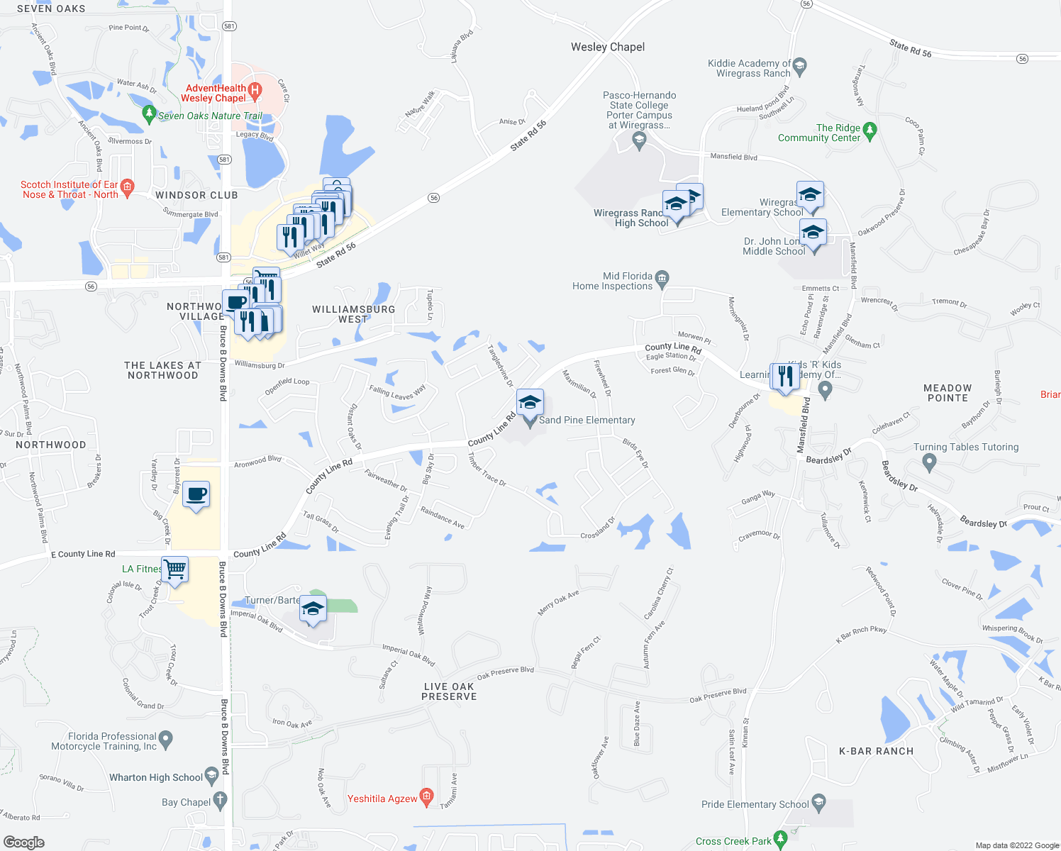 map of restaurants, bars, coffee shops, grocery stores, and more near 29040 County Line Rd in Zephyrhills