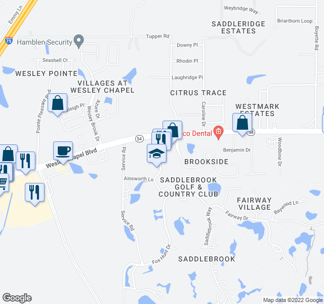 map of restaurants, bars, coffee shops, grocery stores, and more near 5700 Saddlebrook Way in Wesley Chapel