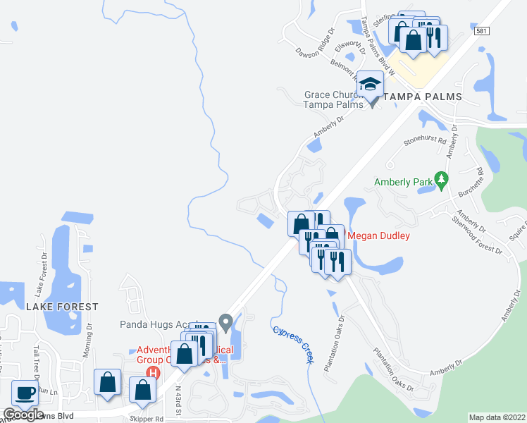 map of restaurants, bars, coffee shops, grocery stores, and more near Norfleet Way in Tampa