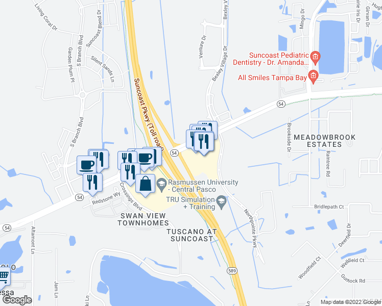 map of restaurants, bars, coffee shops, grocery stores, and more near 16525 Point Village Dr in Lutz