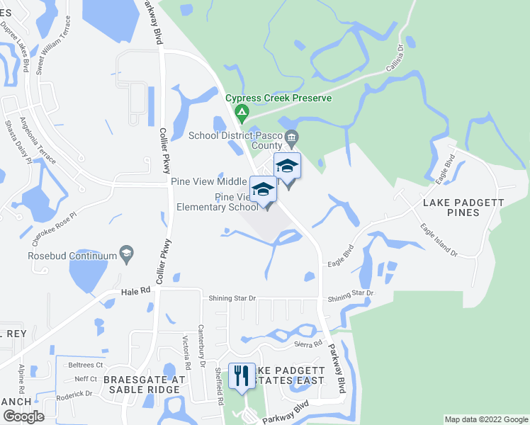 map of restaurants, bars, coffee shops, grocery stores, and more near 5333 Parkway Boulevard in Land O' Lakes