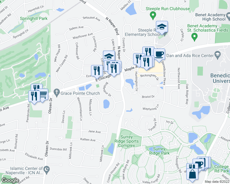 map of restaurants, bars, coffee shops, grocery stores, and more near 6S480 Naper Boulevard in Naperville